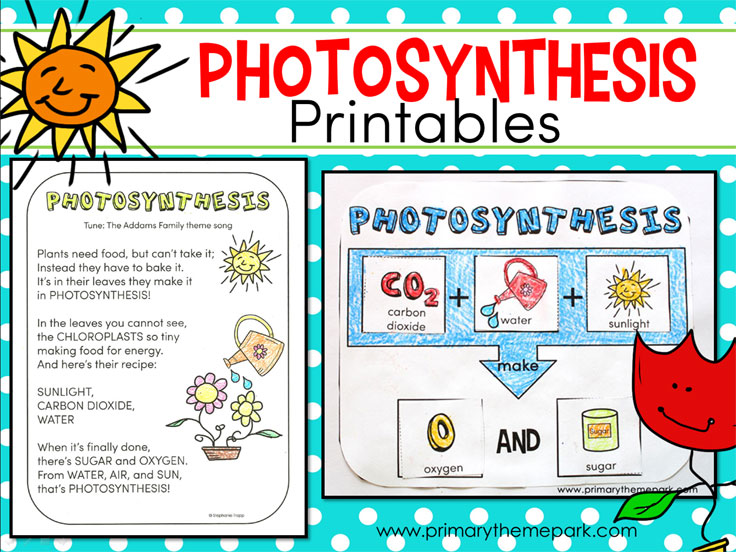 Photosynthesis for Kids: Activities and Printables for Young Learners