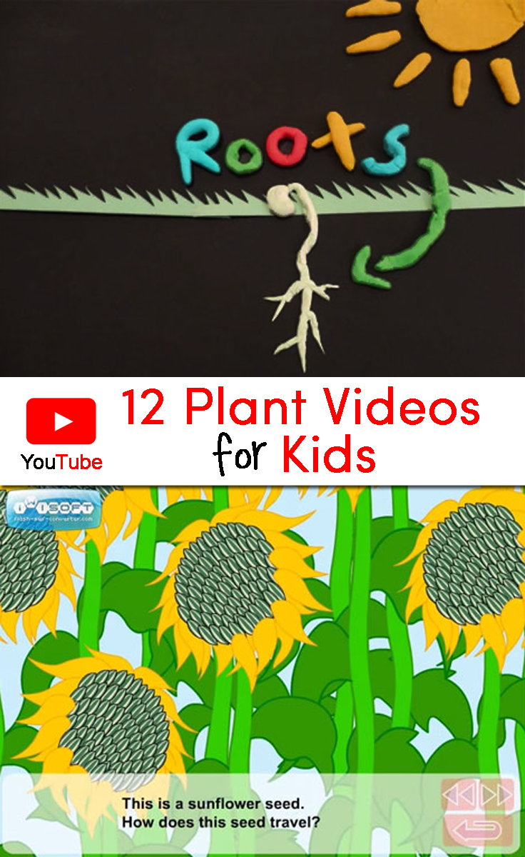 Plant Videos for Kids