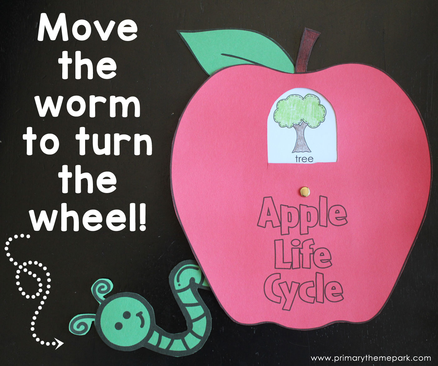 Apple Unit for Kindergarten and First Grade multiplication, free worksheets, learning, and worksheets Apple Tree Life Cycle Worksheet 2 1170 x 1400