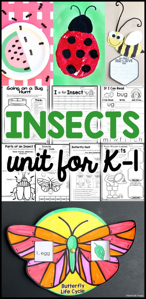 Cross-curricular insect activities in a week long unit for K-1. Detailed daily lesson plans cover science, math, literacy, handwriting, art and more!