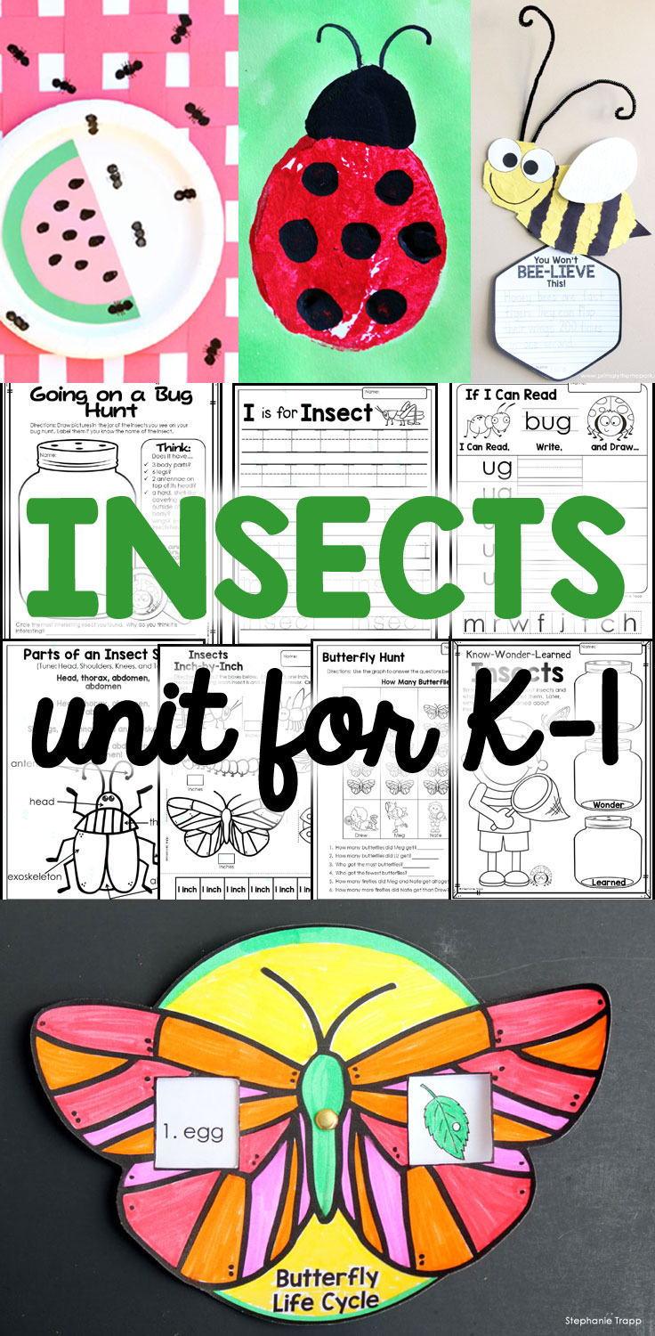 A week-long, cross-curricular insect unit for kindergarten and first grade. Detailed daily lesson plans save you a ton of time!