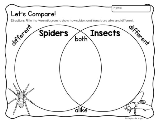 Spider Unit For Kindergarten And First Grade Primary Theme Park