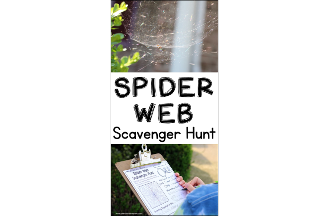 Spider Web Scavenger Hunt | Spider Activities for Kids | Types of Spider Webs