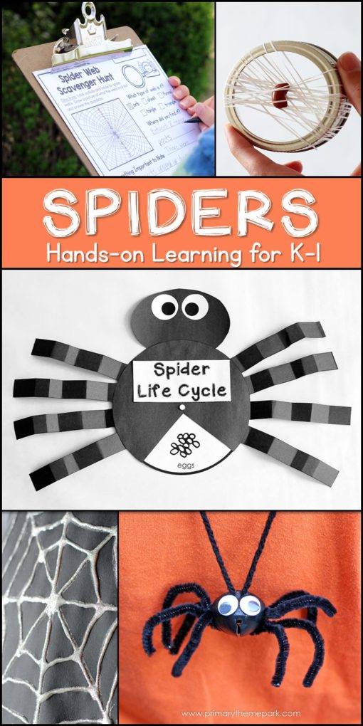 Spider Unit for Kindergarten and First Grade | Spider Unit 1st Grade | Spider Activities for Kids