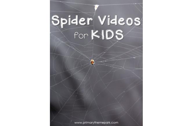 Spider Videos for Kids | Spider Activities | Spider Unit
