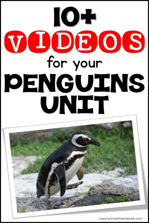 Penguin Videos for Kindergarten and First grade: Over 10 penguin videos for kids that are a perfect complement to a penguin unit study. #penguins #penguinkids #scienceforkids