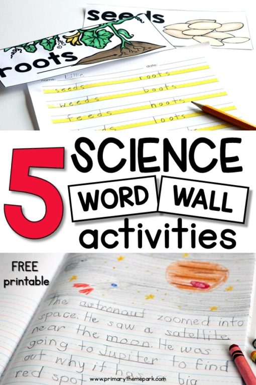 Science Word Wall Ideas