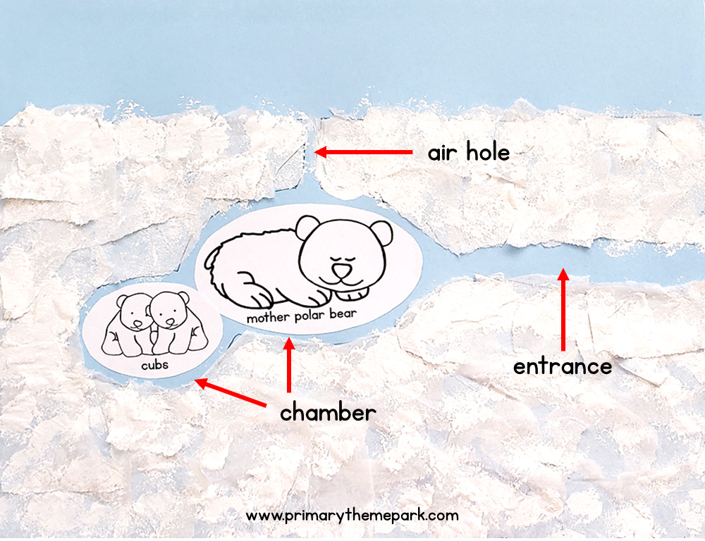 Polar bear den diagram