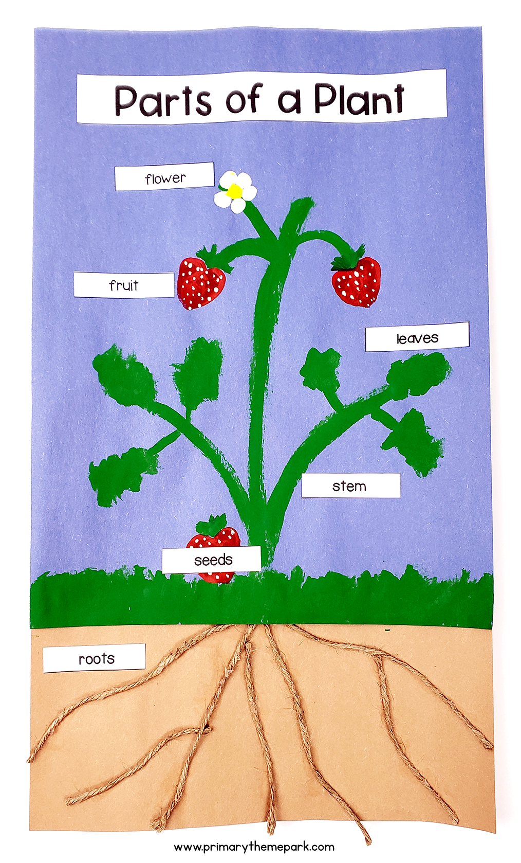 This fun parts of a plant craft uses a strawberry plant to show all six main parts of a plant.